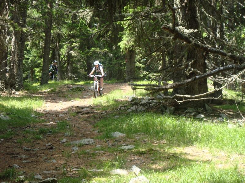 Kolmnock afdaling trail (3)