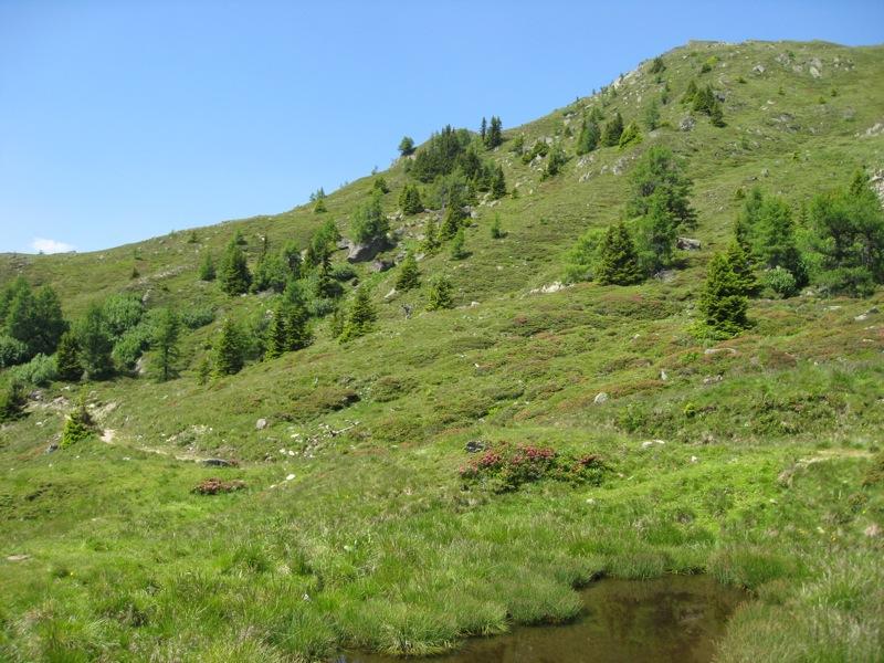 Wandeling vanaf de Lammsdorferhütte (9)