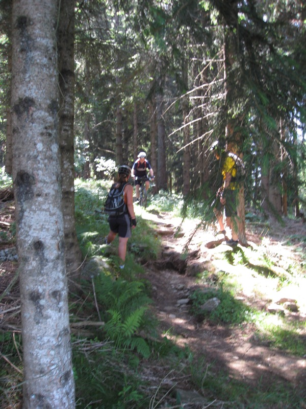 Trail technik training